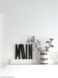 Bilderleiste mit Design Letters-Buchstaben und Eukalyptus-Knospen.