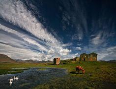 Country Life by Þorsteinn H Ingibergsson, Iceland