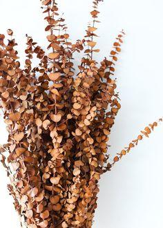 Brown Flowers, Faux Flowers, Dried Flowers, Terracota, Plant Aesthetic, Flower Aesthetic, Brown Aesthetic, Autumn Aesthetic, Metal Clock