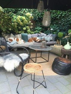Summer style!! Basket Lights! Wonderful covered terrace deck veranda with great Bohemian Chic - and two sweet dogs!