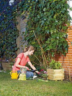 Jardinería: Cómo hacer tu huerto