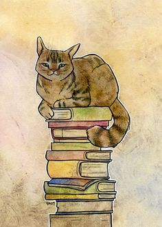 cat on book stack - Google Search