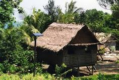 Solomon Islands has a current issue of strucual buildings. The buildings are actually often made of natural things, and these things cant hold the pressure of the wind, so they will fall over. Solomon Islands, South Pacific, House Styles, Natural Things, Nature, Primitive, Buildings, Houses, Traditional