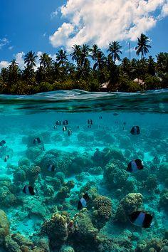 Split-View, The Maldives