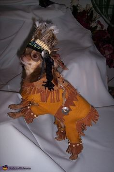 Joyce: This is my Chihuahua, Rico Suave. He is dressed in his Lil Indian costume that I made from brown felted fabric and embellished with beads, feathers, and yarn braids. Silver...
