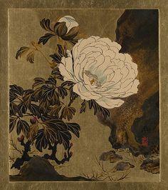 Lacquer Paintings of Various Subjects: PeoniesArtist: Shibata Zeshin (Japanese, 1807–1891) Period: Meiji period (1868–1912)