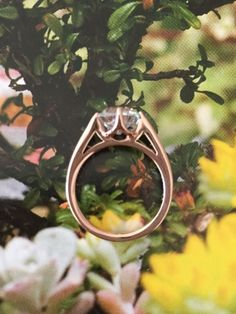 LAD Antique Cushion + Rose Gold Sholdt Ring : Show Me the Bling! (Rings,Earrings,Jewelry) • Diamond Jewelry Forum - Compare Diamond Prices, Discussions & Diamond Information
