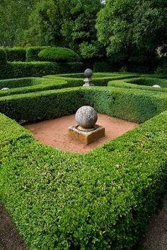 plants | protractedgarden