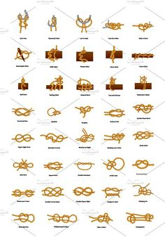 Big set of different sea knots Graphics Big set of different sea knots isolated on white by Evgeniy