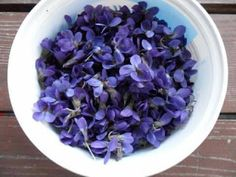 Strawberry Fields, Edible Flowers, Herbalism, Cabbage, Vegetables, Blog, Recipes, Veggies, Rezepte