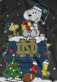 Two of my most favorite things! Snoopy and Notre Dame! Notre Dame Football, Notre Dame Athletics, Packers Football, Football Team, College Football, Notre Dame Apparel, Notre Dame Shirts, Irish Fans, Go Irish