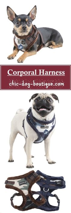 """A conveniently adjustable dog harness for odd-shaped pets, the Puppia Corporal Harness has both an adjustable neck and chest for a great fit. It's blue or green camouflage pattern and soft fleece lining make it cozy for Winter walks with the pup who loves to """"hunt""""."""