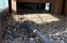 The deep litter method for chicken coops is pretty controversial among backyard chicken keepers. Here's why you should consider the deep litter method! Chicken Coop Plans, Building A Chicken Coop, Diy Chicken Coop, Chicken Pen, Raising Backyard Chickens, Keeping Chickens, Meat Chickens, Yard And Coop, Chicken Garden