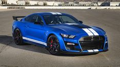 New Ford Mustang Shelby - Perfect Sport Car! Ford Mustang Shelby Gt500, Ford Gt500, New Ford Mustang, Shelby Gt350r, Ford Shelby, Mustang Cars, 1967 Mustang, Ford Mustangs, Gt Cars