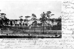 This Florida Memory postcard shows a view of Walton County's Lake DeFuniak about 1906.