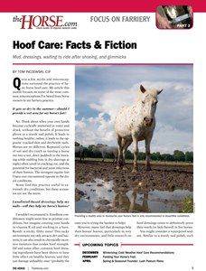 The Horse   Hoof Care Facts and Fiction   TheHorse.com
