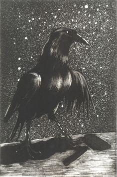 Paula Rego The Night Crow 1994 Etching and aquatint 27 x 18,1 cm Paper: 39 x 29,8 cm Série The Crow Artist's proof