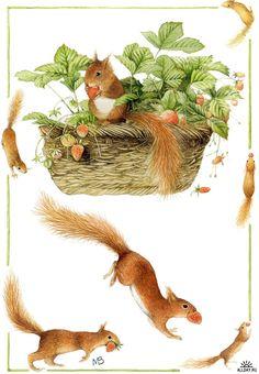Oh those darn squirrles getting in my stuff!  {Illustrator Bastin Marjolein}