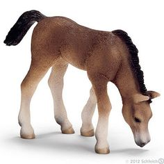 NEW SCHLEICH 13652 Arabian Foal, Grazing - RETIRED. A well detailed and posed model of the Arabian Foal, Grazing. Schleich Horses Stable, Horse Barns, Horse Stalls, Horse Online, Mare Horse, Arabian Horses, Bryer Horses, Horse Gear, Horse Tips