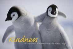 Vriendelijkheid Posters - bij AllPosters.be