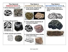 This is the infographic I give to my students to help them associate the characteristics of igneous, sedimentary, and metamorphic rocks with actual photographs and diagrams of each rock type. I find it most useful to print in color. This is a great study Science Tools, Science Worksheets, Social Science, Teaching Science, Teaching Resources, Teaching Ideas, Rock Identification, Igneous Rock, Rock Cycle