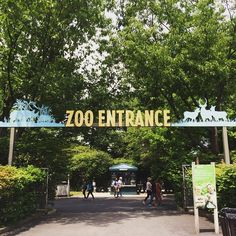 The Bronx Zoo, summer in NYC, 2015