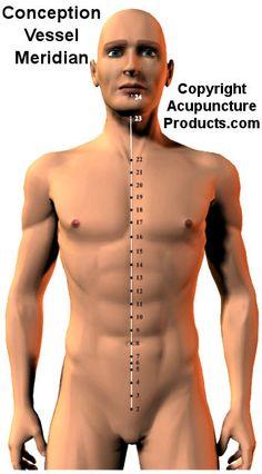 Acupuncture Conception Vessel Meridian