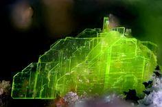 Heinrichite - Schmiedestollen dump, Wittichen, Schenkenzell, Black Forest, Baden-Württemberg, Germany FOV : 1.84 mm Minerals And Gemstones, Rocks And Minerals, Cool Rocks, Rock Collection, Mineral Stone, Rocks And Gems, Amazing Nature, Stones And Crystals, Black Forest