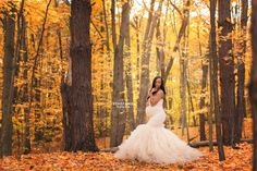 Elegant and glamorous maternity photography by Sthefanie Souza in Rochester NY  Celine gown in Champagne by Sew Trendy Accessories