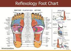 Free+Downloads+Reflexology+Foot+Chart | Health Reflexology Acupressure Foot Massage Thai Traditional Wooden ...