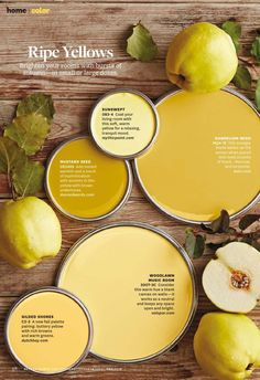 Ripe Yellows Paint Palette. Paint color used: Sunswept 083-4 by mythicpaint.com Mustard Seed DE5426 dunnedwards.com Dandelion Wish MQ4-12 Behr Woodlawn Music Room 3007-3c Vaspar Gilded … Read More:
