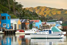 Related image Boat Shed, S Pic, New Zealand, Sheds, Houses, Image, Art, Homes, Backyard Sheds