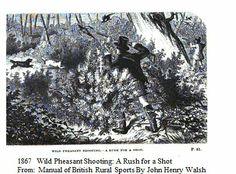 1867      Wild Pheasant Shooting.                             From: Manual of British Rural Sports By John Henry Walsh.    Via     Google Books   (PD-100)                   suzilove.com