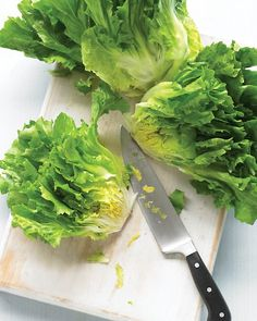 Escarole = Batavian Endive = Batavia = Scarol. Escarole has sturdy leaves and a slightly bitter flavor. Young escarole leaves are tender enough to add to salads, otherwise escarole is best cooked as a side dish or used in soups.