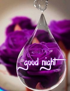 Good Night Quotes Images, New Good Night Images, Good Night Love Messages, Good Morning Beautiful Pictures, Good Night Greetings, Good Night Wishes, Good Night My Friend, Good Night I Love You, Good Night Flowers