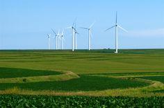 Wind turbines dot Iowa's landscape