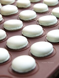 Macaron Recipe, Home Food, Macaroons, Nutella, Panna Cotta, Dessert Recipes, Food And Drink, Cooking Recipes, Menu