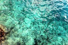 West View es una hermosa piscina natural ubicada al suroeste de la isla de San Andrés, aquí podrás apreciar una enorme variedad de peces de colores, corales e incluso un museo hundido en el mar. En este lado de la isla no hay playa, se accede al agua mediante escaleras, rodaderos y trampolines.  http://www.sanandresislas.com.co/west-view-san-andres