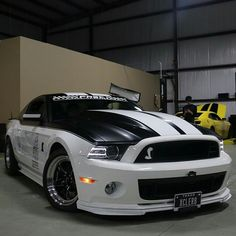 Shelby tuned