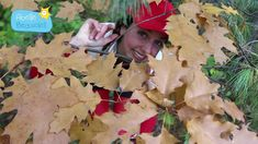 """Comptine de la Semaine #26 d'Abeille Beausoleil - """"La valse des feuilles d'automne"""" - YouTube"""