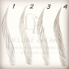 """Gefällt 172 Mal, 21 Kommentare - AleksandraManiuse Microblading (@microblading_deluxebrows) auf Instagram: """"Different hair-strokes patterns. Which one do you prefer? #deluxebrows #manualpermanentmakeup…"""""""