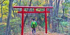 Wandern in Japan: 5 aussergewöhnliche Routen nahe Tokyo – Weltreiseforum: Langsam reisen in Asien und der Welt
