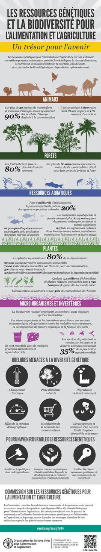 21 best la biodiversité images on Pinterest Infographic, Beautiful - bilan energetique maison gratuit