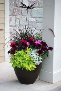 Container Gardening Ideas Over 20 flower planter ideas from my neighborhood! - These are real flower planters Pot Jardin, Outdoor Flowers, Outdoor Flower Planters, Outside Flower Ideas, Deco Floral, Front Yard Landscaping, Landscaping Ideas, Landscaping Software, Landscaping Melbourne