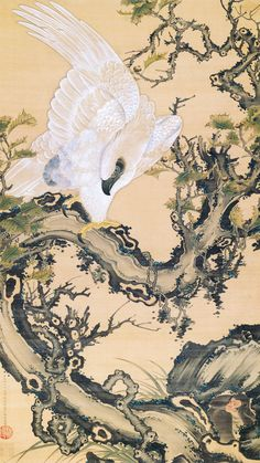 Japanese Embroidery Tiger 枯木鷲猿 Old tree, Hawk and Monkey. Circa 1757 by Ito Jakuchu Japanese hanging scroll. Art Chinois, Japan Painting, Japanese Prints, Japanese Bird, Art Japonais, Old Trees, T Art, Japanese Embroidery, Art Moderne