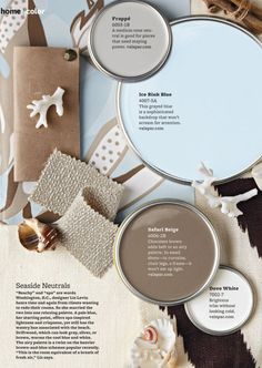Beach Color Scheme | Blue and Brown Coastal Colour Palette