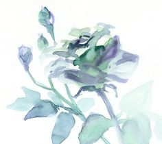 Delft Blue Rose Watercolor by VerbruggeWatercolor