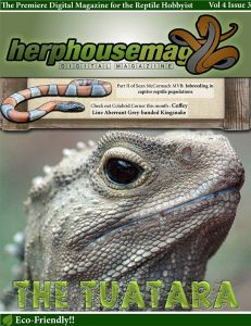 HerpHouse Mag Vol. 4 Issue 3 Amphibians, Reptiles, House And Home Magazine, Animals, Animales, Animaux, Animal, Animais, Combat Boots