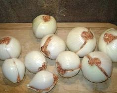 Onion hamburger bombs for the grill