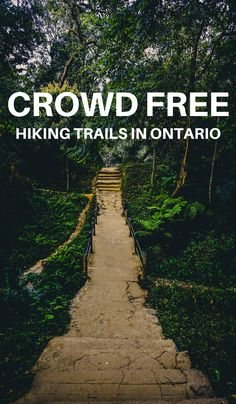 Looking for some trails in Ontario without the crowds? Check out these incredible lesser-known Ontario trails to hike that you'll have to yourself. Ontario City, Ontario Travel, Ontario Camping, Ontario Parks, Visit Canada, Canada Canada, Alberta Canada, Vancouver, Canadian Travel